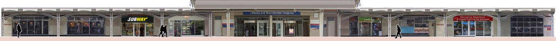 Fulham Road Chelsea Hospital