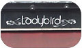 Ladybird Islington